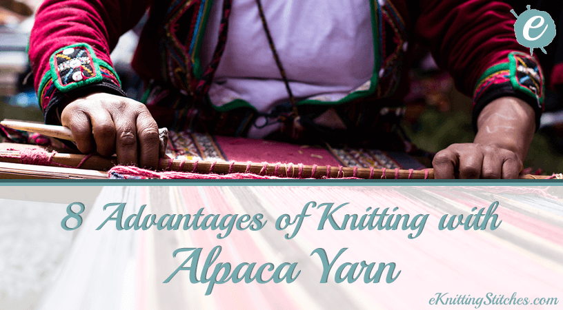 8 Advantages of Knitting with Alpaca Fiber Title