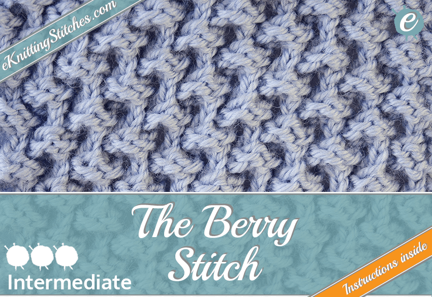 Berry stitch example & Title Slide for