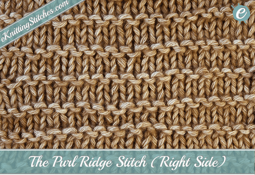 The Purl Ridge Stitch - eKnitting Stitches.com