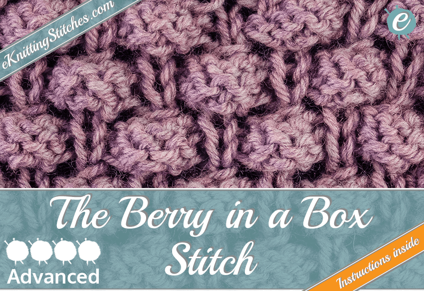 Berry in a Box Stitch example & Title for