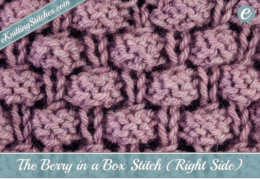 Berry in a Box Stitch - eKnitting Stitches.com