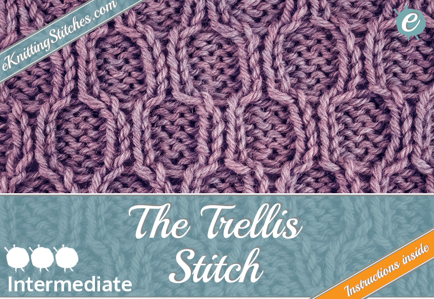 Trellis stitch example & Title Slide for