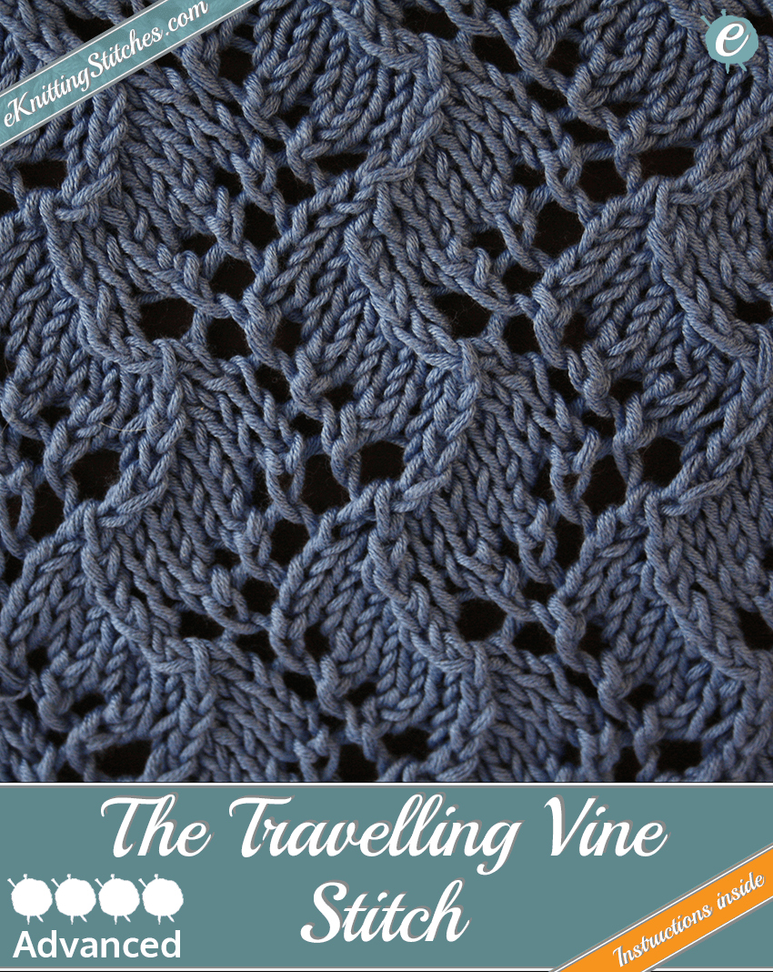 Travelling Vine Stitch example & Title Slide for