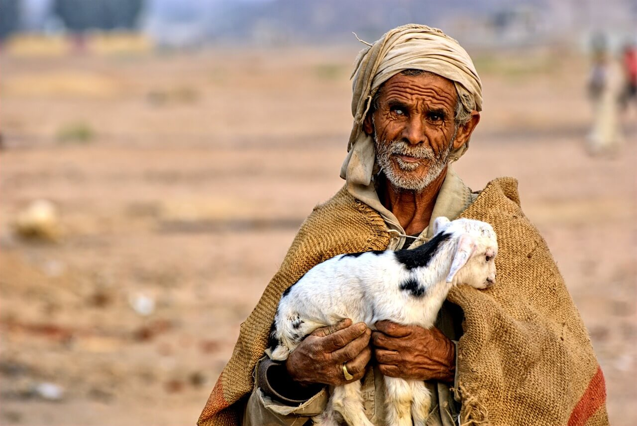 Bedouin in Egypt carrying a baby Sheep