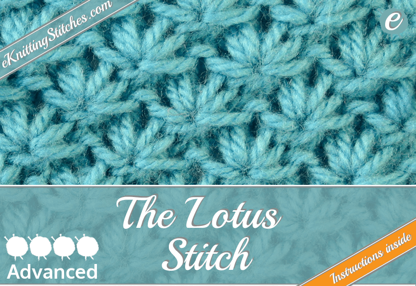 The Lotus Stitch Title