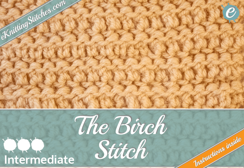 Birch Stitch example & Title Slide for